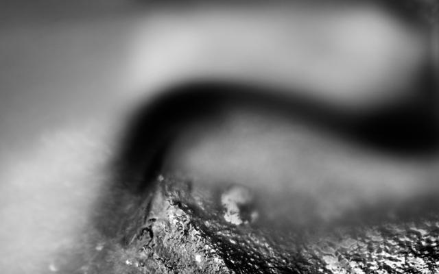 BrianCooneyPhotography-2603-Edit